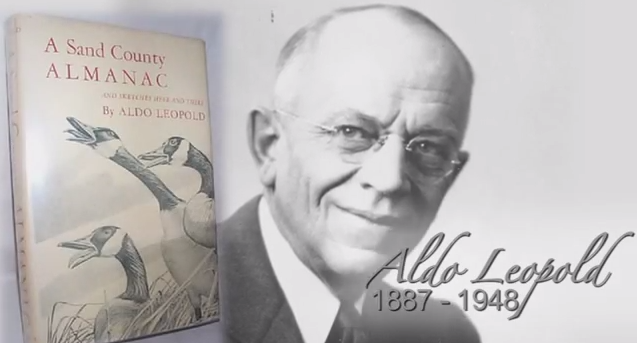 a review of a sand country almanac by aldo leopold term paper help